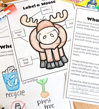Free printable forest animal worksheets