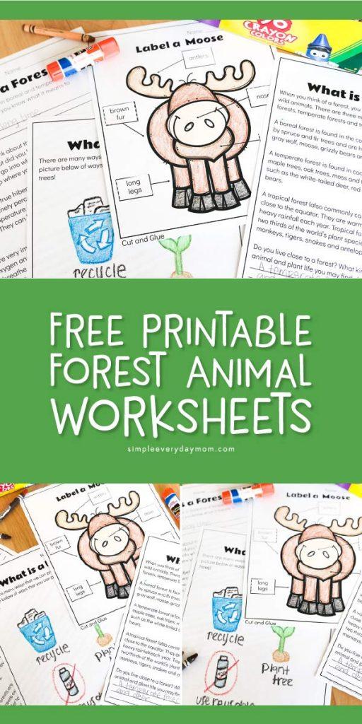 free forest animal worksheets for kindergarten