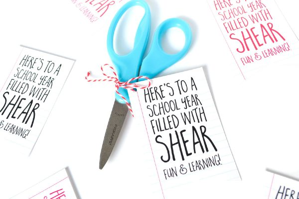 Show your new teacher a little love with this super easy, cheap and cute DIY teachers gift for back to school. And bonus: it comes with a free printable tag!