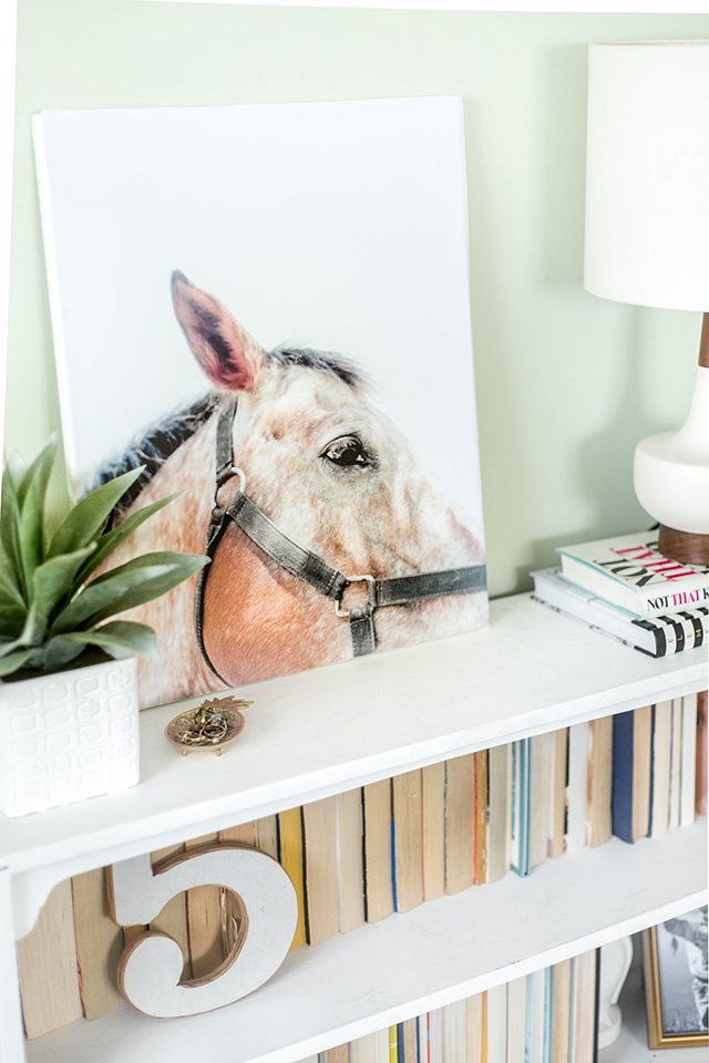 horse art on bookshelf