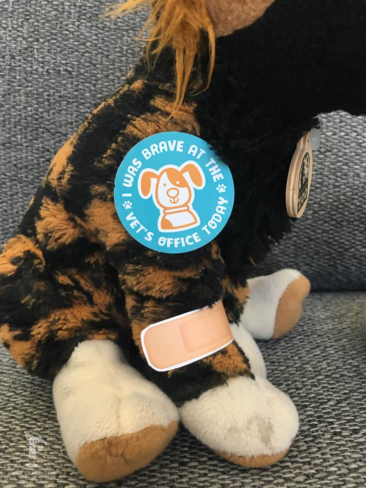 vet community helpers | preschool activities