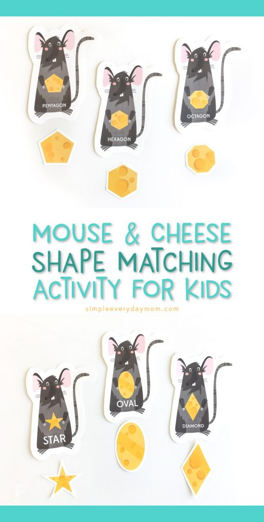 Shape Matching Game For Kids | Teach your preschooler or kindergartener basic shapes with this fun mouse and cheese game.