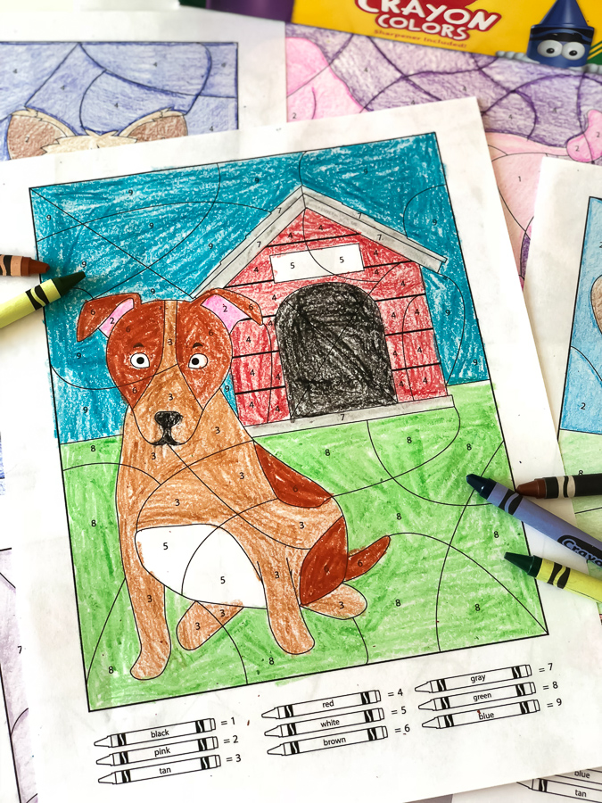 Dog Coloring Sheets | These printable color by number worksheets make learning fun! They're great for using in the classroom or for homeschooling. #kidsactivities #ideasforkids #homeschool #coloring #art