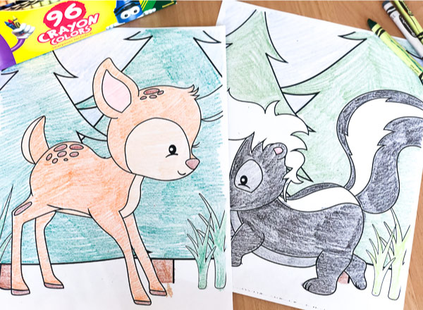 image relating to Printable Woodland Animals called Totally free Printable Woodland Animal Coloring Internet pages For Youngsters
