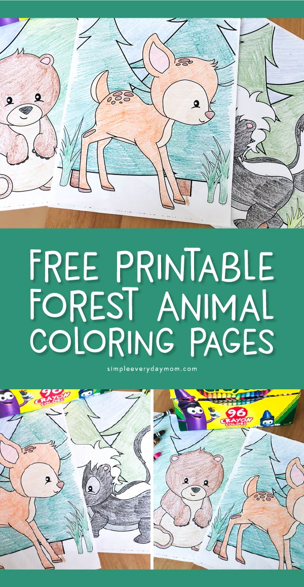 Free Forest Coloring Pages Printable, Download Free Clip Art, Free ... | 1158x600