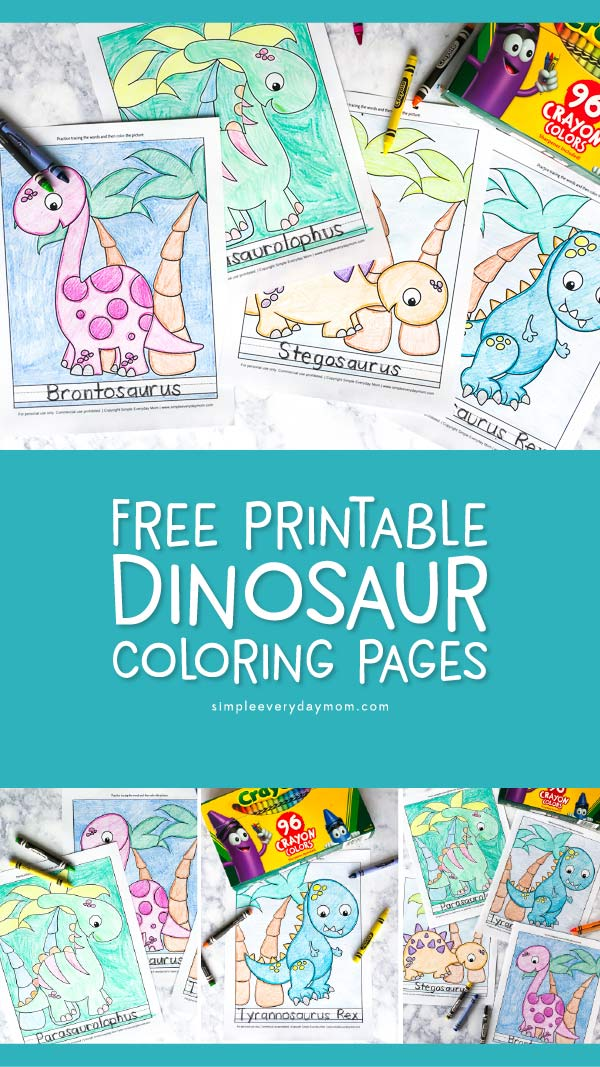 Free Printable Dinosaur Coloring Pages | Kids will love coloring these cute and fun pictures of dinosaurs including the T rex, Stegosaurus, Brontosaurus, Triceratops and more! 