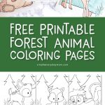 Free Printable Forest Animal Coloring Pages | These cute animal coloring sheets are perfect for young kids in preschool, prek and kindergarten and feature adorable animals like a fox, deer, skunk, raccoon, squirrel, bunny, bear and hedgehog. #kidsactivities #kidsandparenting #coloringpages #art #craftsforkids #kidscrafts #children #earlychildhood