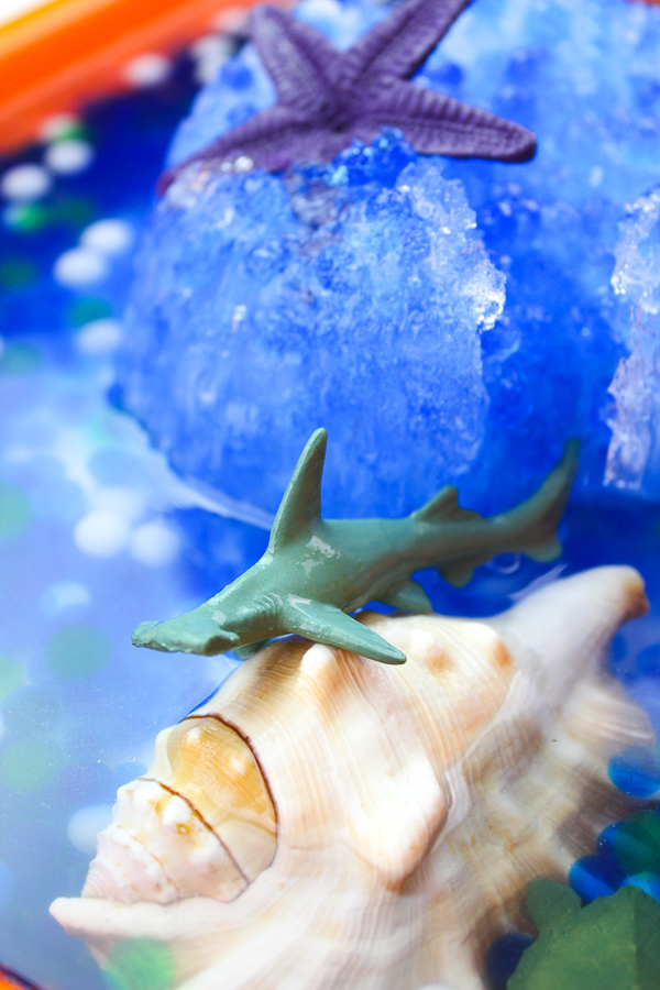 Ocean Unit Activity | Incorporate sensory play into your homeschool or classroom ocean studies with this frozen ocean sensory bin. #kindergarten #homeschool #summerfunlist #unitstudies #naturestudy