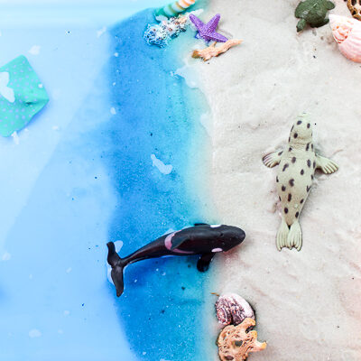 Ocean Sensory Table   Let kids pretend they're at the beach with this fun beach small world setup. It has sand, water, animals and shells! Perfect for sensory play. #sensoryplay #activitiesforkids #earlychildhood #kidsactivities