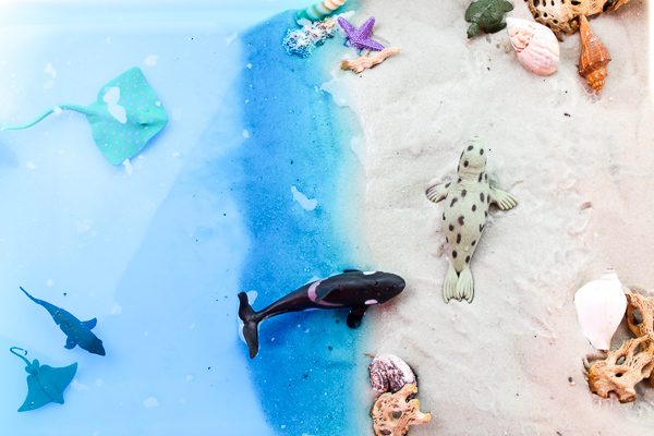 Ocean Sensory Table | Let kids pretend they're at the beach with this fun beach small world setup. It has sand, water, animals and shells! Perfect for sensory play. #sensoryplay #activitiesforkids #earlychildhood #kidsactivities