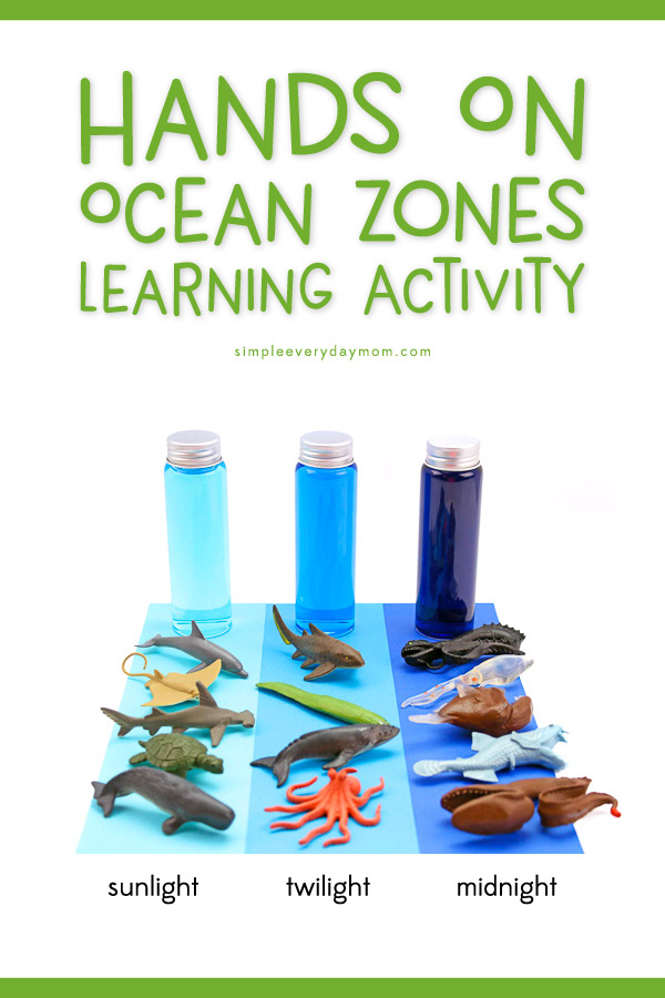 Ocean zones For Kids | Teach preschool aged kids about the animals that live in each zone of the sea with this hands on ocean zones in a bottle activity. 