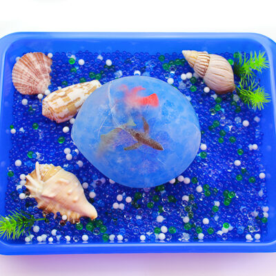 Frozen Ocean Sensory Bin   Kids will have fun playing at home with water beads, shells and frozen ocean animals! It's a great summertime activity for children. #preschool #sensoryplay #earlychildhood #ocean #kidsandparenting #kidsactivities #outdooractivities #summeractivities #stem