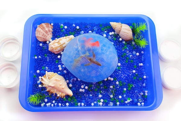 Frozen Ocean Sensory Bin | Kids will have fun playing at home with water beads, shells and frozen ocean animals! It's a great summertime activity for children. #preschool #sensoryplay #earlychildhood #ocean #kidsandparenting #kidsactivities #outdooractivities #summeractivities #stem