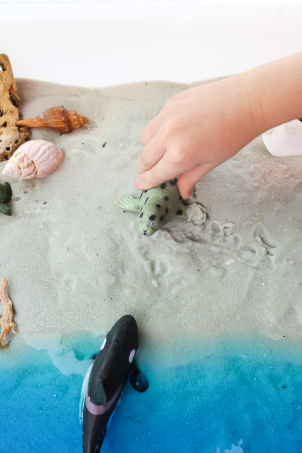 Beach Play Sensory Bin | Preschool and kindergarten kids will have so much fun learning about the ocean ecosystem and ocean animals when they play with this outdoor beach sensory bin. #kidsactivities #preschool #teacher #educationalactivities #ocean
