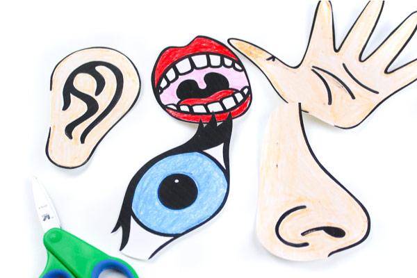5 senses for kids