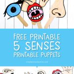 Five Senses Activity For Kids   Toddlers, preschool kids and kindergarten children will have fun telling stories about the human body and its senses with these puppets including an eye, mouth, nose, ear and hand. #preschool #toddler #kindergarten #craftsforkids #kidscraft #kidsactivities