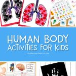 7 Interesting Human Body For Kids Crafts Activities More Simple Everyday Mom