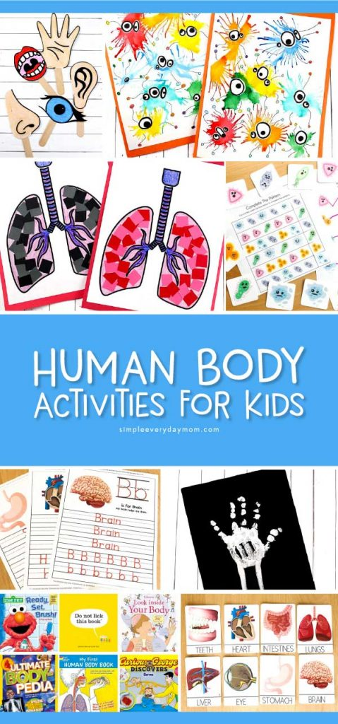 Human Body Activities For Kids | Teaching kids all about their body has never been so interesting and fun! This roundup includes free printables, crafts, art projects and more for preschool and kindergarten. #preschool #kindergarten #earlychildhood #kindergartenworksheets #craftsforkids #kidscrafts #kidsandparenting #teachingkindergarten #prekteacher