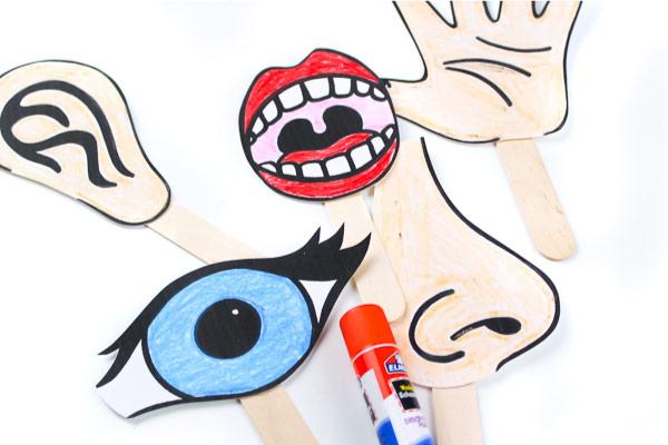 5 Senses story telling puppets for kids
