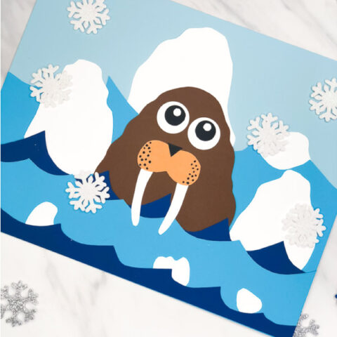 Walrus Craft For Kids