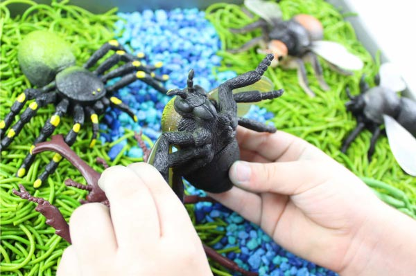 Bug Sensory Bin | Learn all about insects when you use this simple insect activity for kids. It's an easy DIY learning activity your kids will love!
