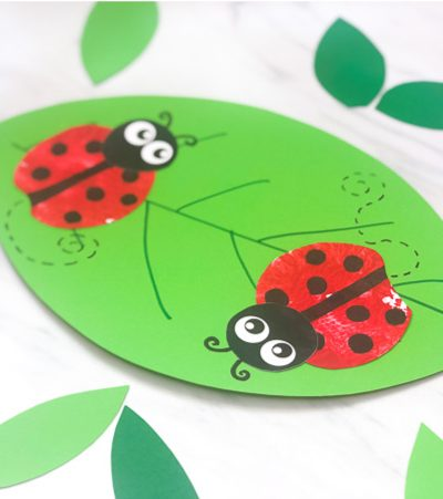 ladybug craft on a leaf