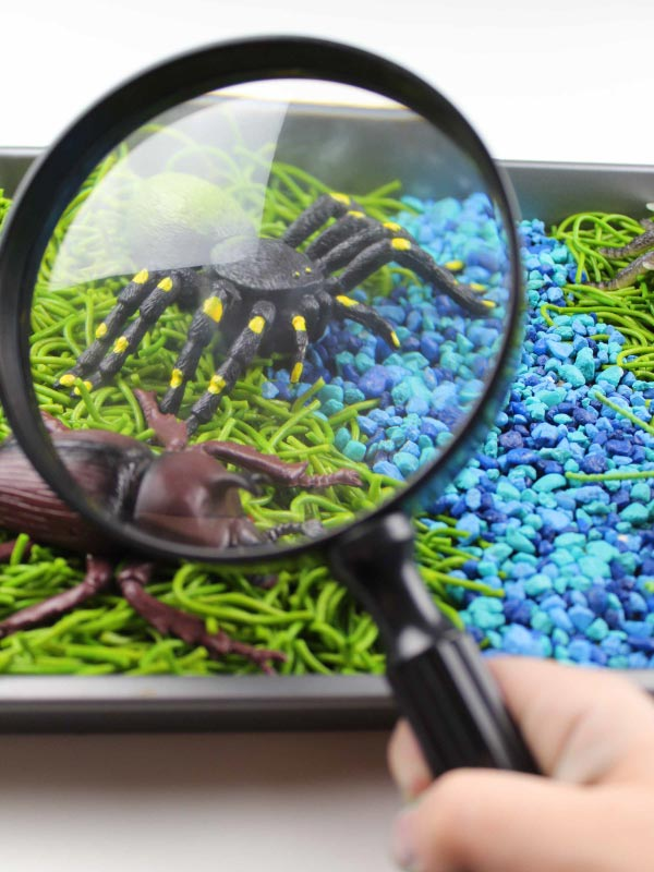 magnifying glass in an insect sensory bin