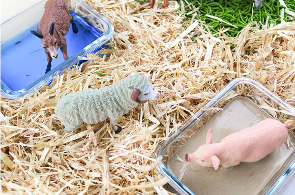Kids Farm Activity | Setup this fun farm small world play that's great for learning and discovery! It works well int the classroom or at home. #kids #kidsactivities #actitivitesforkids #farm #unitstudies #sensorybin #sensoryplay #smallworld