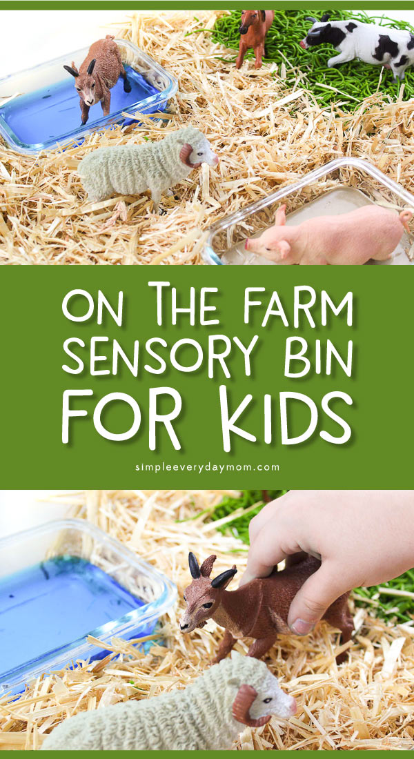 Farm Animal Sensory Bin | Young kids of all ages from toddler, to preschool and kindergarten will love playing in this sensory rich farm animal small world play center. It's easy to set up and can work at home or in the classroom. #kids #kidsactivities #sensorybin #sensoryplay #kidsandparenting #earlychildhood #smallworld #farmanimals #teaching #teacher