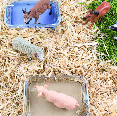 Farm Animal Small World Play | Toddlers, preschool and kindergarten kids will love this farm theme DIY sensory bin. #preschool #prek #kindergarten #toddlers #kidsactivities #smallworldplay #smallworld #sensorybin #sensoryplay #ece