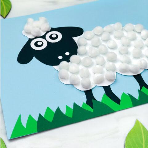 Pom Pom Sheep Craft