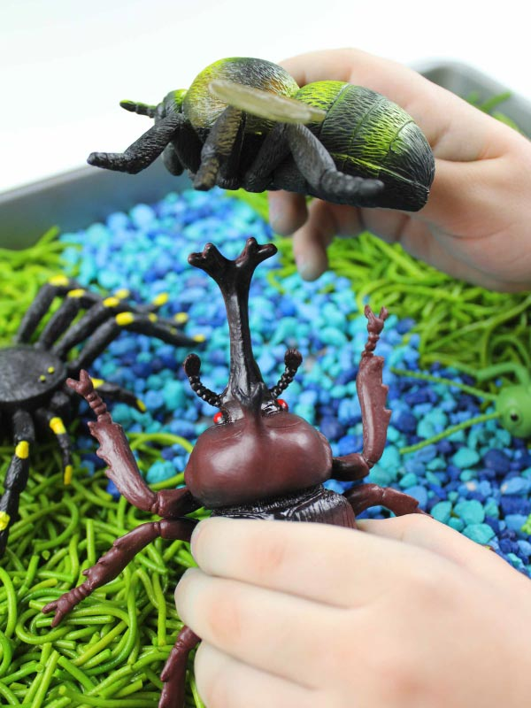 child holding bugs above insect sensory bin