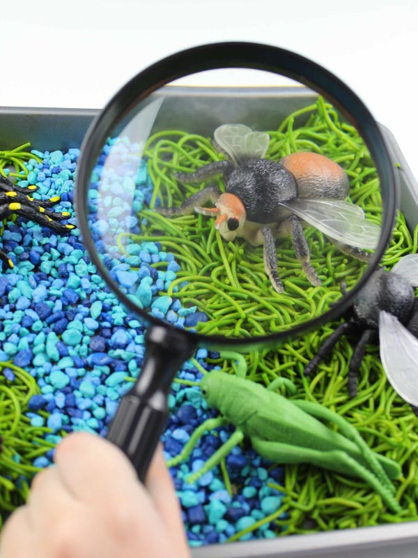 magnifying glass in bug sensory bin
