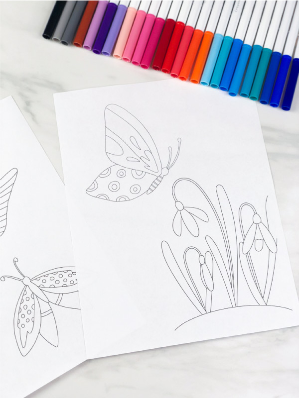 blank butterfly coloring sheets