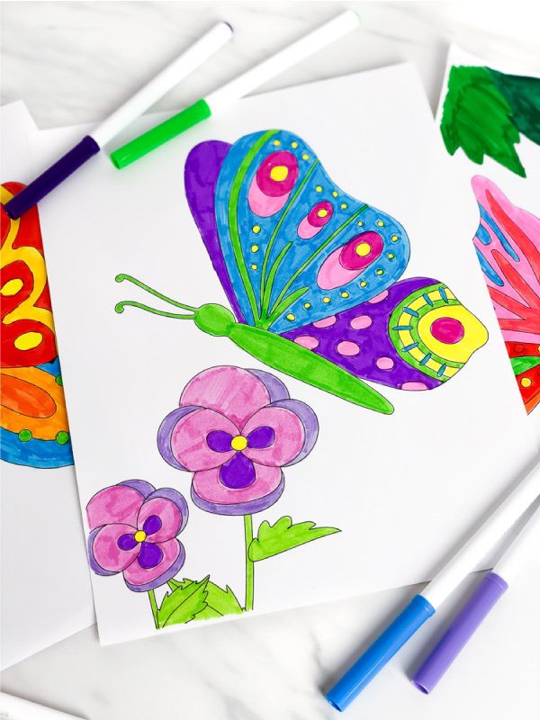 butterfly and flower coloring page