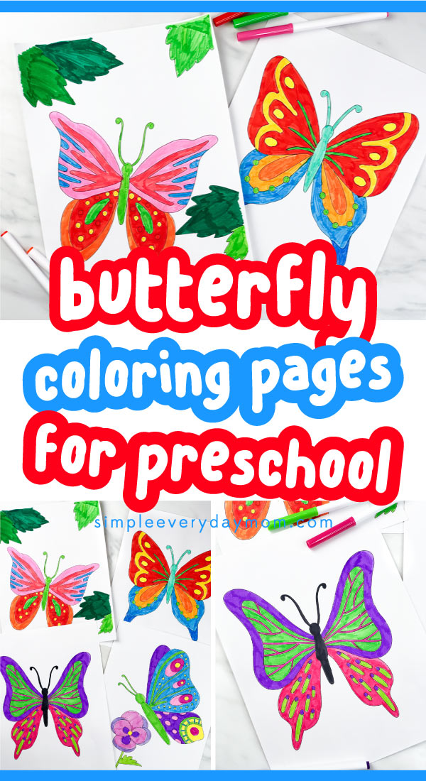 butterfly coloring pages pin image