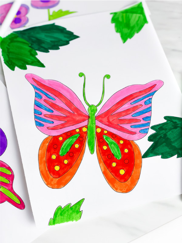 pink, red, blue orange and green butterfly