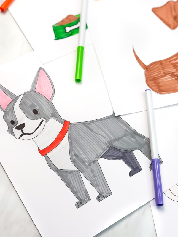 boston terrier coloring page