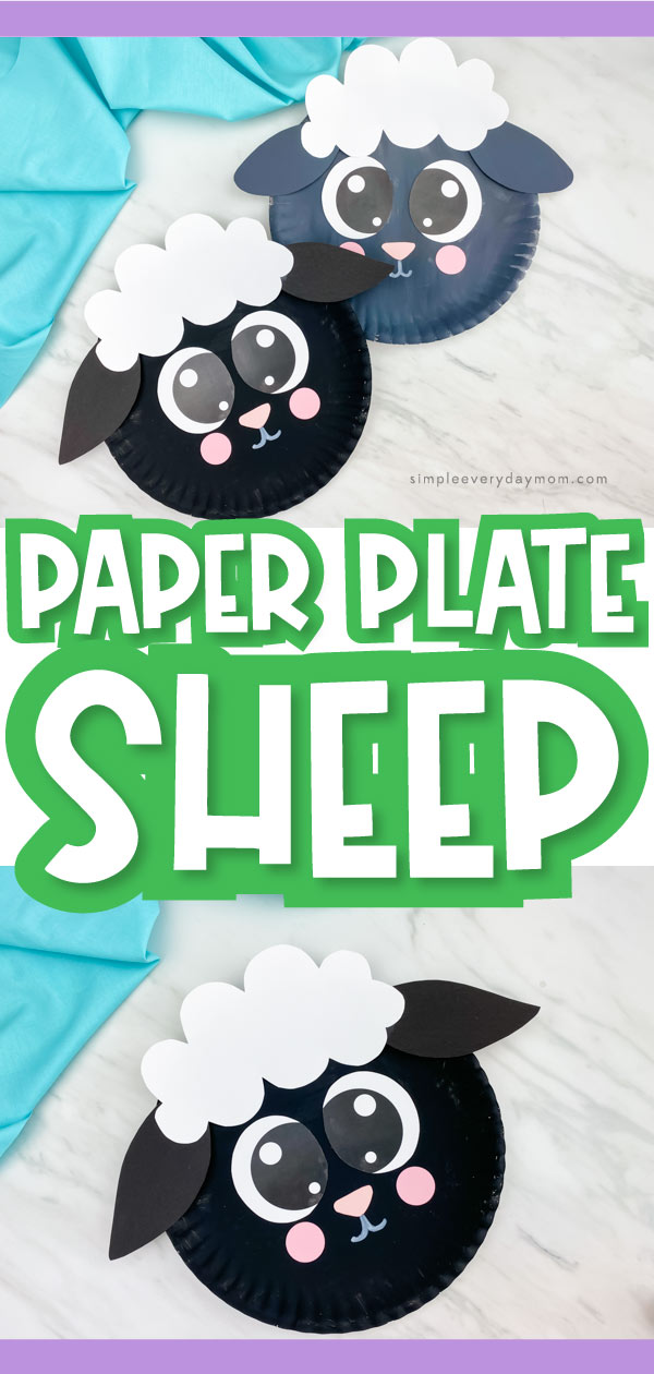 "Collage of paper plate sheep images with the words, ""paper plate sheep"" in the middle"