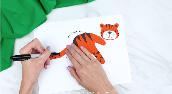 hands drawing on stripes to tiger tail