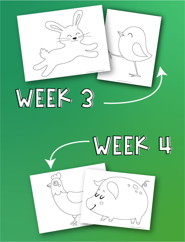 "bunny, chick, rooster and pig  coloring pages with arrows pointing to both with words ""week 3"" and ""week 4"""