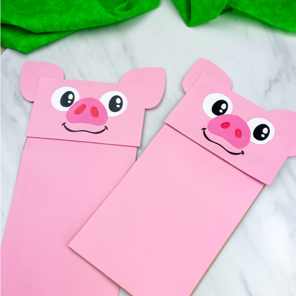 pig puppet craft