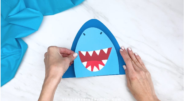 hands gluing on center of shark head to shark body
