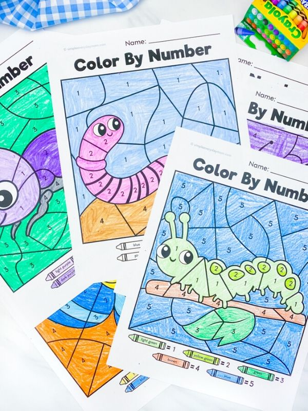 beetle, worm and caterpillar color by number worksheets colored in withe marble background and crayons