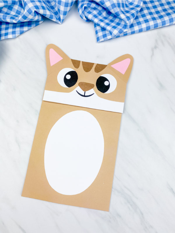 tan cat craft on marble background with blue checkered fabric