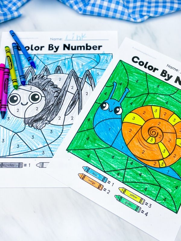 spider and snail color by number worksheets colored in with crayons