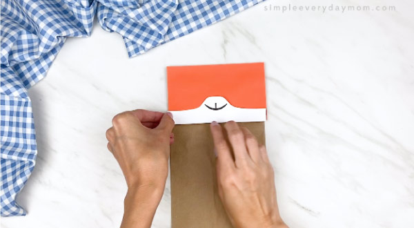 hands gluing on cat muzzle on paper bag