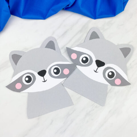 Raccoon Craft For Kids