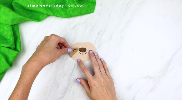 hands gluing on sloth eyes