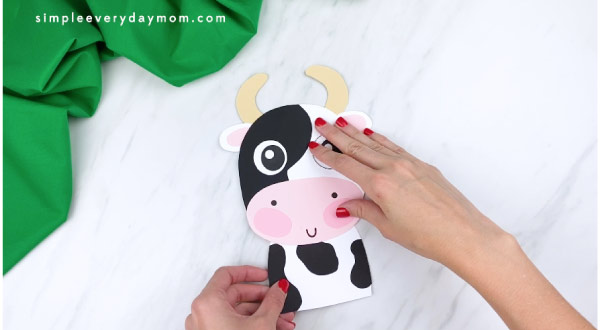 hands gluing cow body to back of cow head